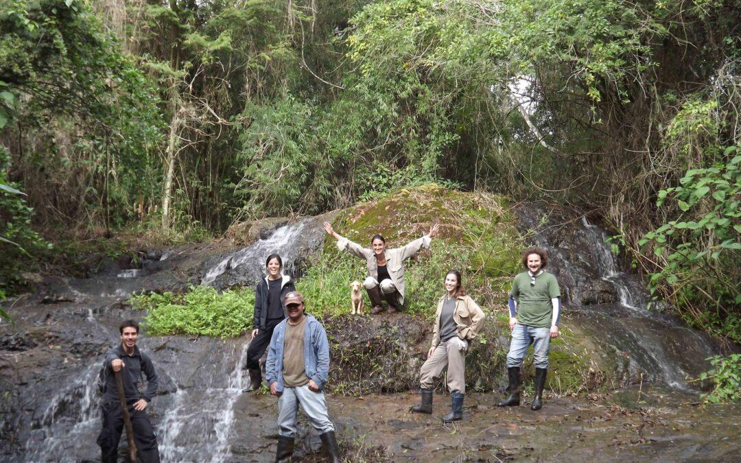 Salvar los bosques está en nuestras manos