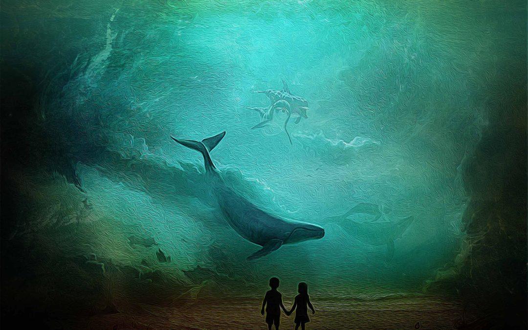 """La segunda aventura: """"Las ballenas del sur"""""""