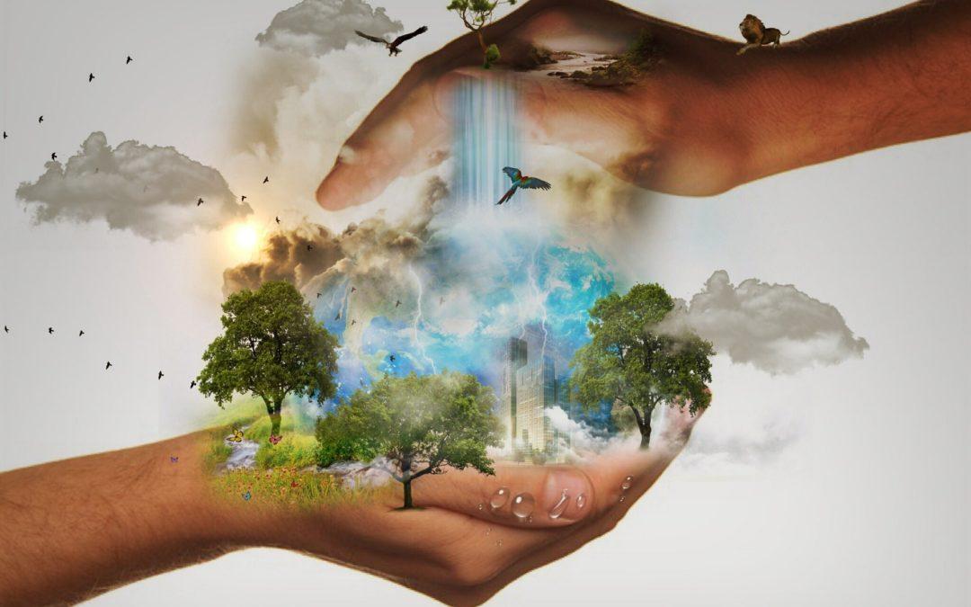 Ilustración y conciencia sobre cambio climático