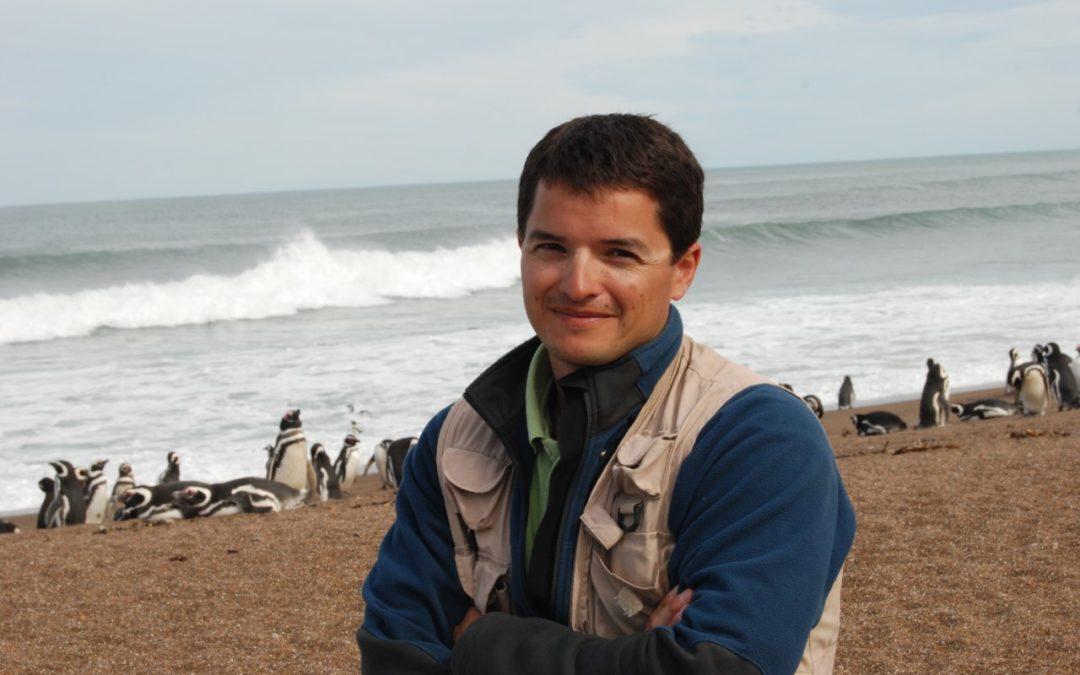 """Pablo García Borboroglu: """"Los pingüinos son un ejemplo de lucha contra la adversidad"""""""