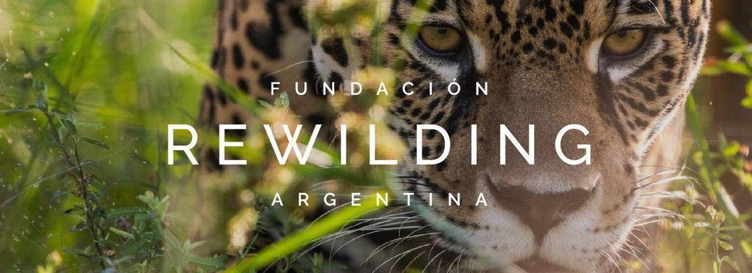 Rewilding: nuevo nombre el mismo compromiso